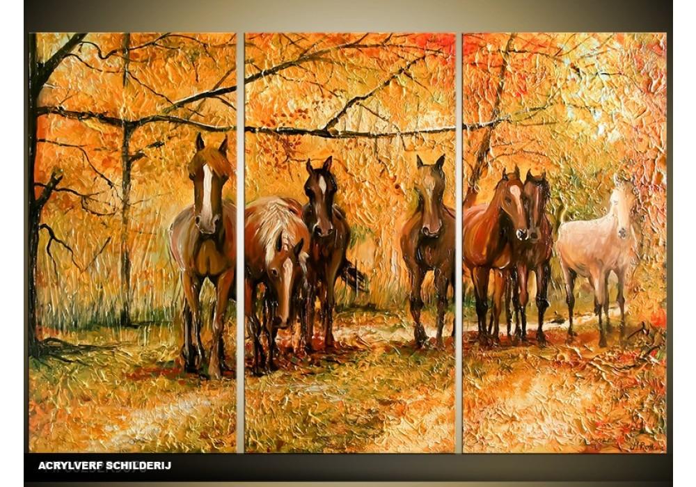 Verbazingwekkend Acryl Schilderij Paard | Bruin, Oranje | 120x80cm 3Luik ZX-39