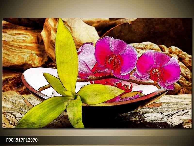 OP VOORRAAD Foto canvas schilderij Orchidee | Kleur: Paars, Groen, Bruin | F004817
