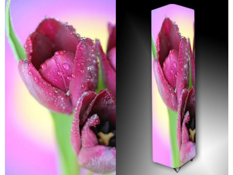 Ledlamp 1014, Bloem, Roze, Paars, Groen