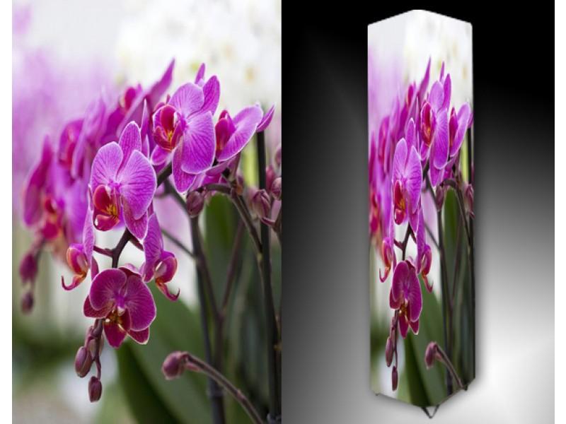 Ledlamp 1018, Orchidee, Roze, Groen, Wit