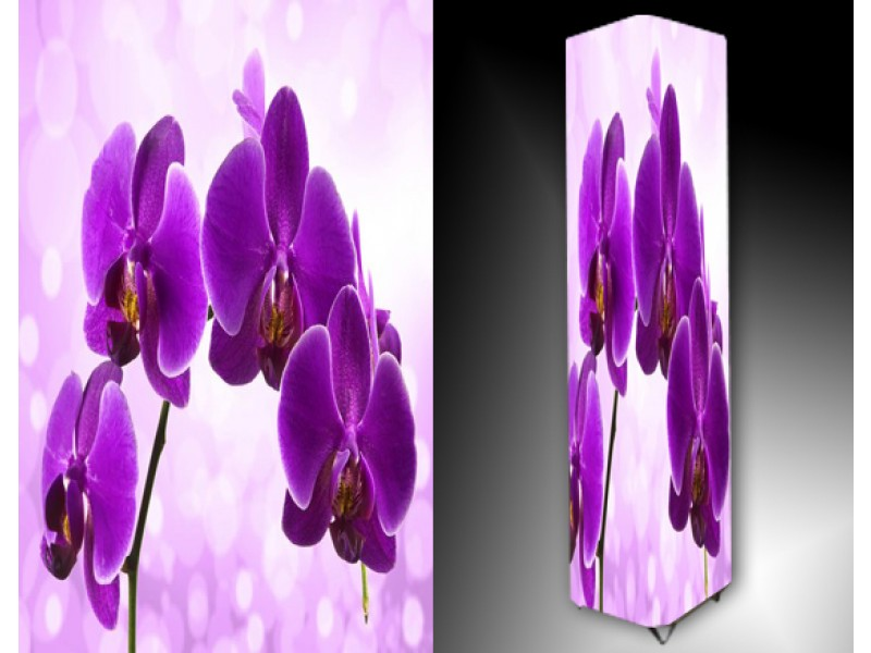 Ledlamp 1031, Orchidee, Paars, Roze, Wit