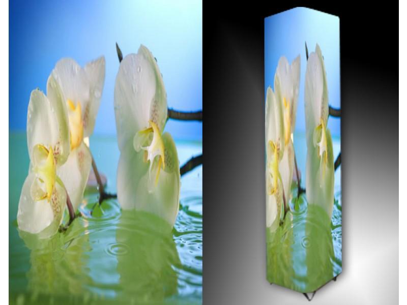 Ledlamp 1070, Orchidee, Groen, Blauw, Geel