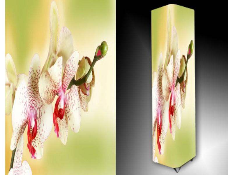 Ledlamp 1116, Orchidee, Roze, Wit, Groen