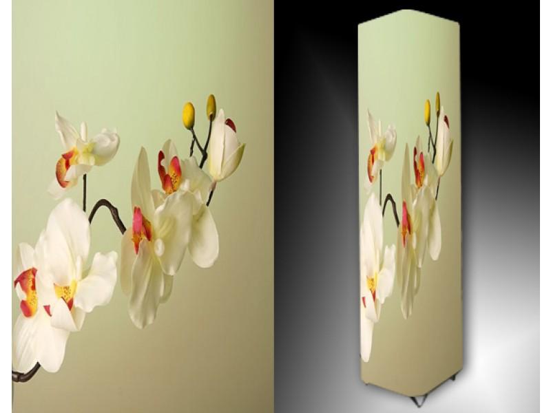 Ledlamp 1143, Orchidee, Wit, Roze, Geel