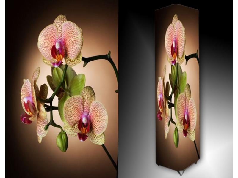 Ledlamp 1159, Orchidee, Roze, Groen, Bruin