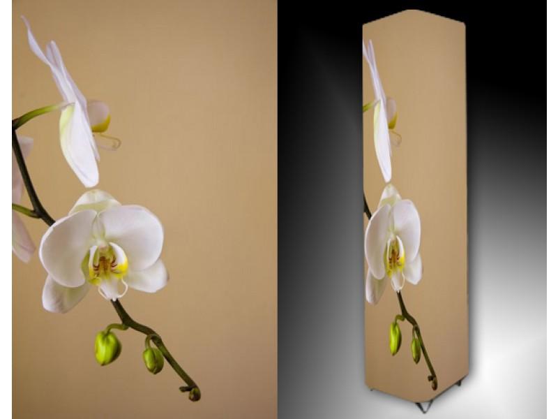 Ledlamp 1176, Orchidee, Bruin, Wit, Groen