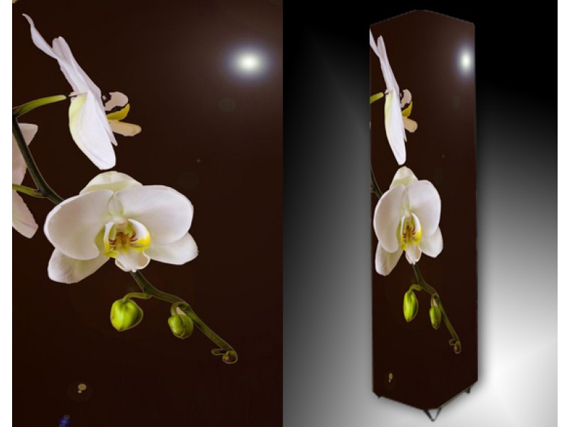 Ledlamp 1179, Orchidee, Wit, Groen, Geel
