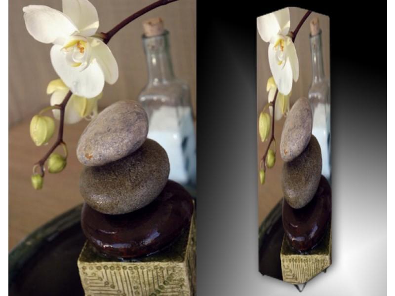 Ledlamp 1193, Orchidee, Bruin, Wit, Blauw
