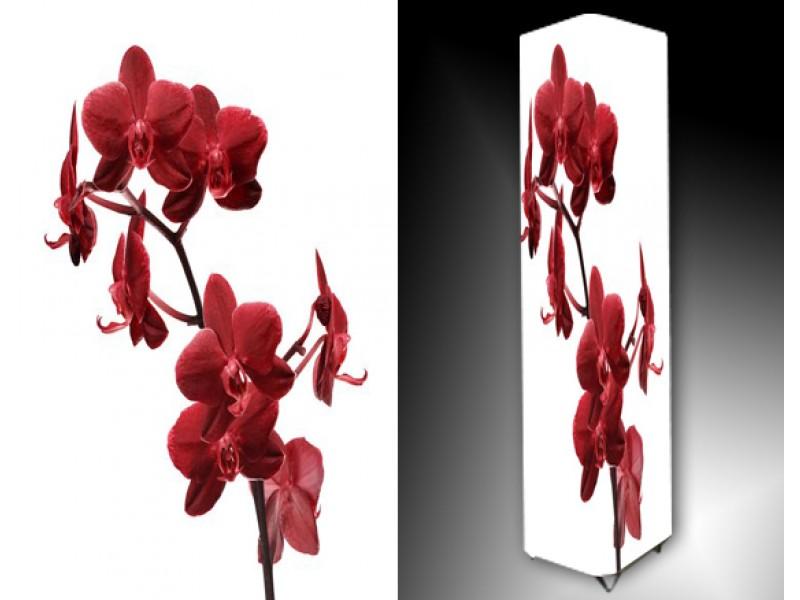 Ledlamp 720, Orchidee, Rood, Wit