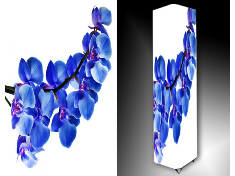 Ledlamp 730, Orchidee, Blauw, Paars, Wit