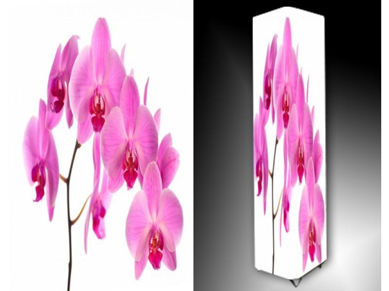 Ledlamp 738, Orchidee, Roze, Wit