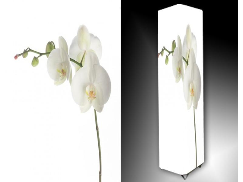Ledlamp 741, Orchidee, Groen, Wit, Geel