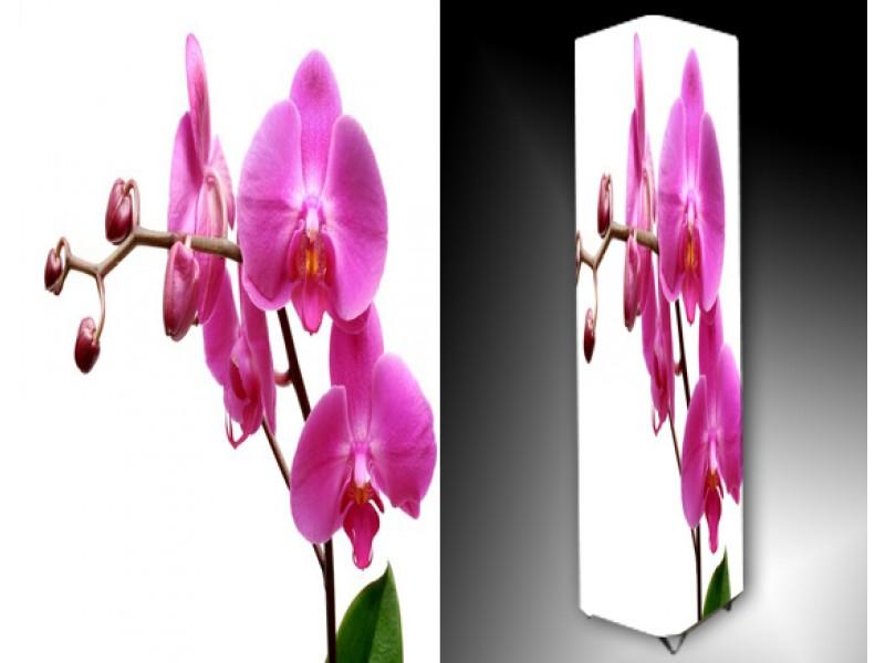 Ledlamp 759, Orchidee, Roze, Wit, Groen