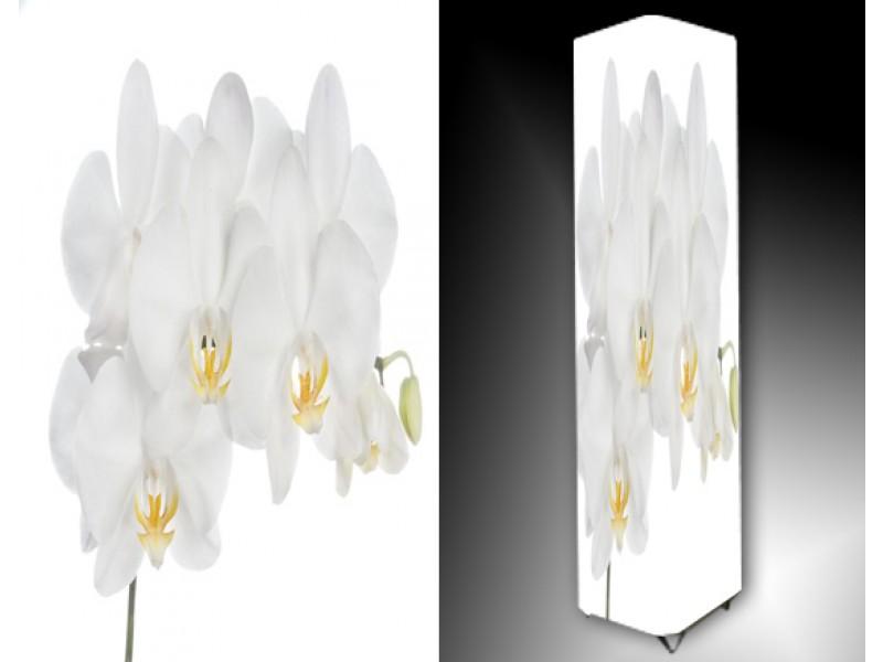 Ledlamp 771, Orchidee, Wit, Geel, Groen