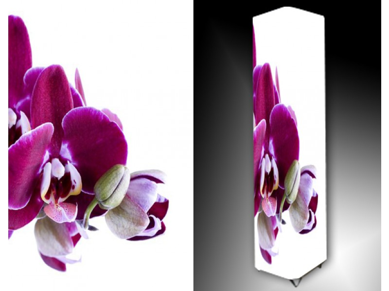 Ledlamp 773, Orchidee, Paars, Wit