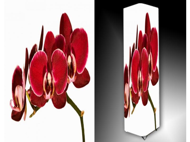 Ledlamp 784, Orchidee, Rood, Groen