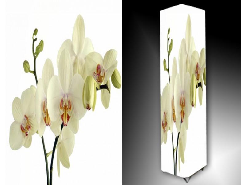 Ledlamp 785, Orchidee, Wit, Groen, Geel