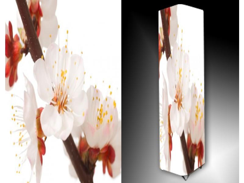 Ledlamp 814, Orchidee, Rood, Oranje, Wit