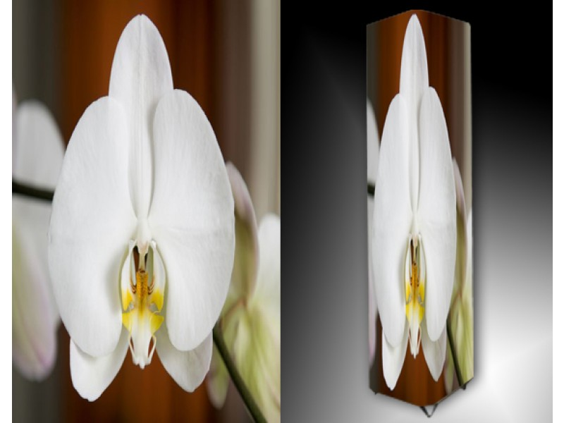 Ledlamp 820, Orchidee, Wit, Geel, Bruin