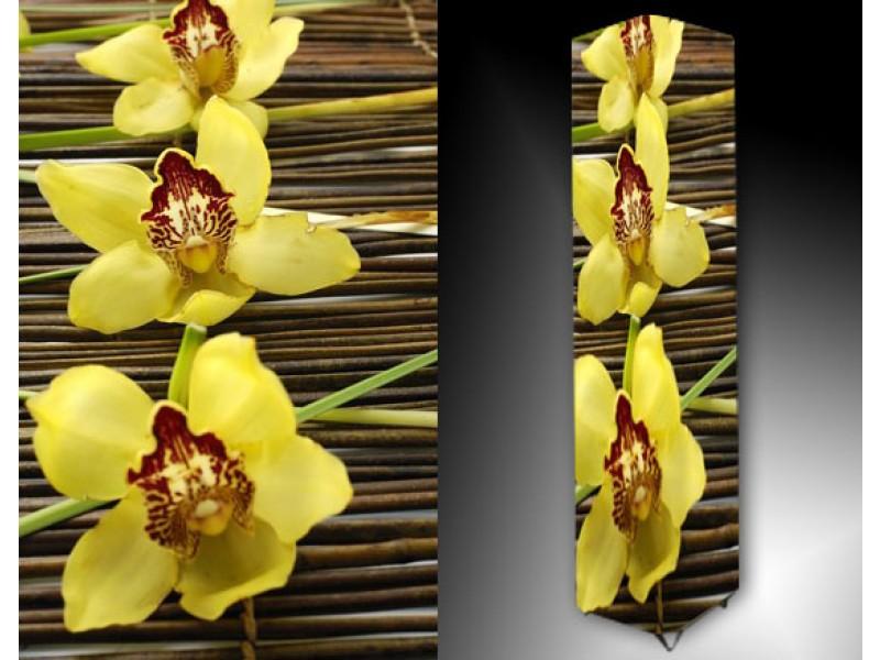 Ledlamp 866, Orchidee, Geel, Roos, Bruin
