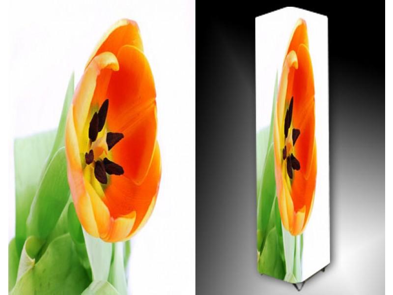 Ledlamp 877, Tulp, Groen, Oranje, Geel