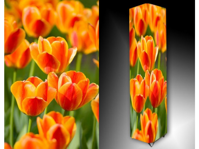 Ledlamp 886, Bloem, Oranje, Geel, Groen