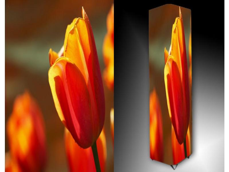 Ledlamp 894, Tulp, Oranje, Rood, Geel