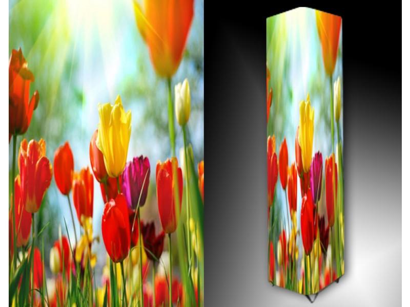Ledlamp 904, Tulpen, Oranje, Rood, Geel