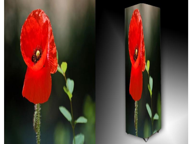 Ledlamp 908, Bloem, Rood, Groen