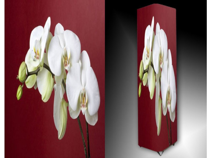 Ledlamp 917, Orchidee, Rood, Wit, Groen