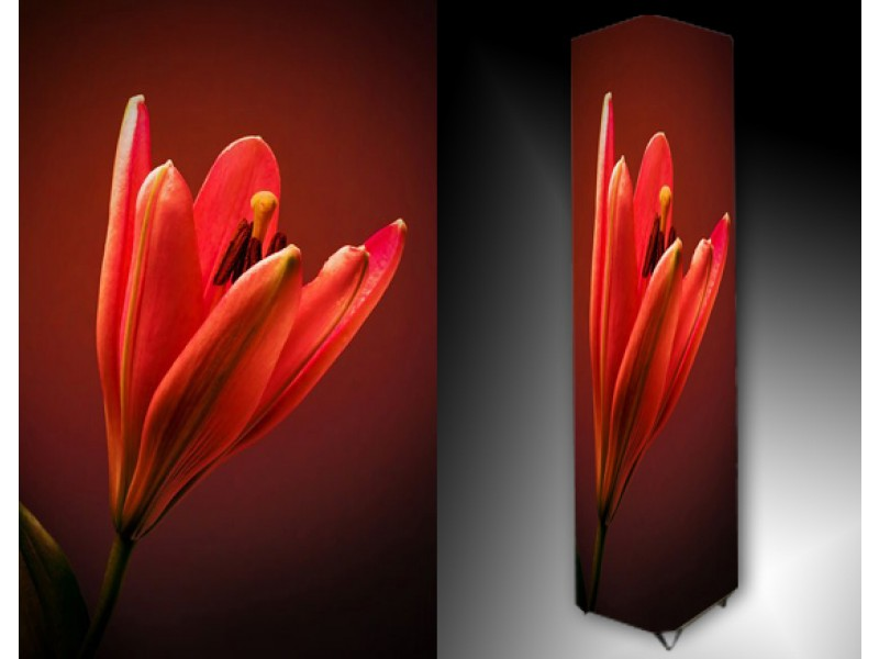 Ledlamp 925, Bloem, Rood, Zwart