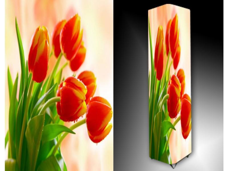Ledlamp 935, Tulp, Oranje, Geel, Groen