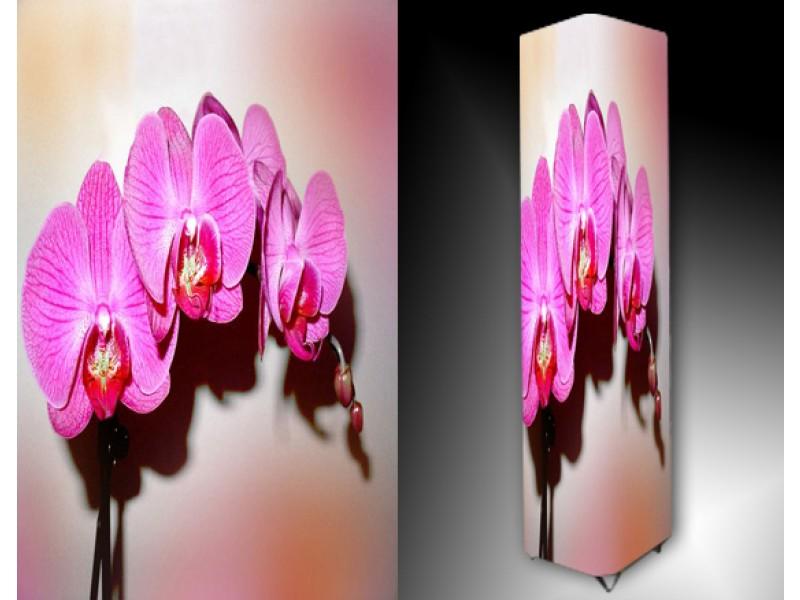 Ledlamp 968, Orchidee, Roze, Wit, Bruin