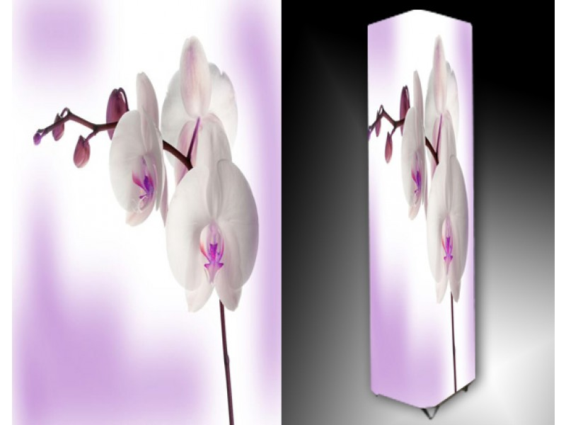 Ledlamp 990, Orchidee, Paars, Wit, Roze