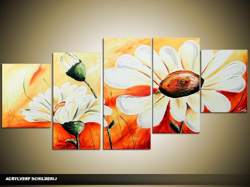 Acryl Schilderij Daisy | Wit, Oranje | 150x70cm 5Luik Handgeschilderd