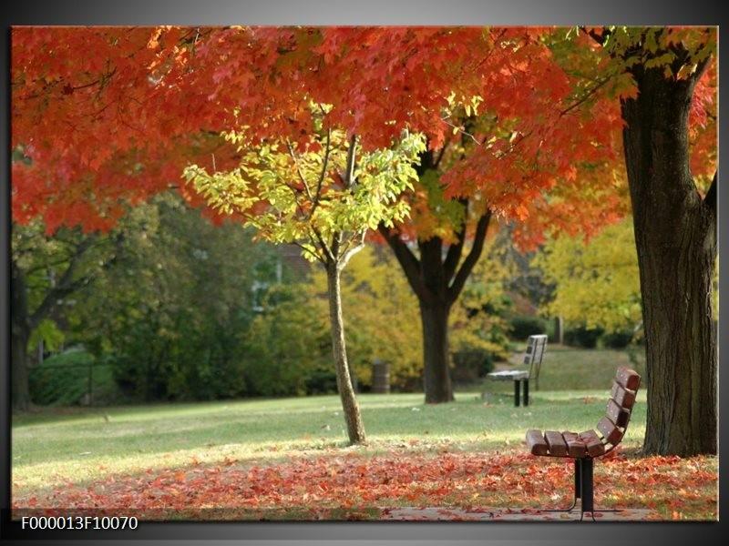 Glas schilderij Park | Oranje, Geel, Groen