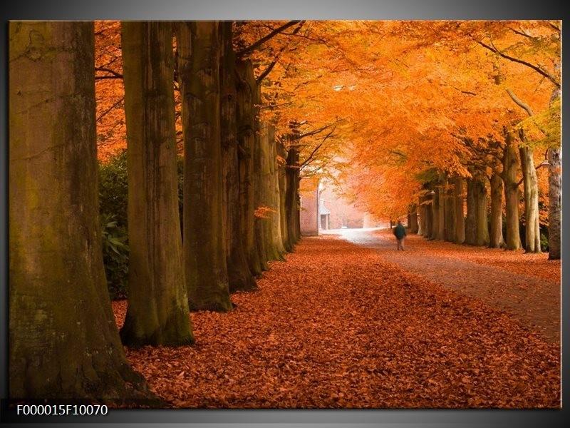Glas schilderij Herfst | Oranje, Bruin, Groen