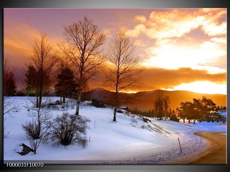 Glas schilderij Winter | Wit, Bruin, Oranje