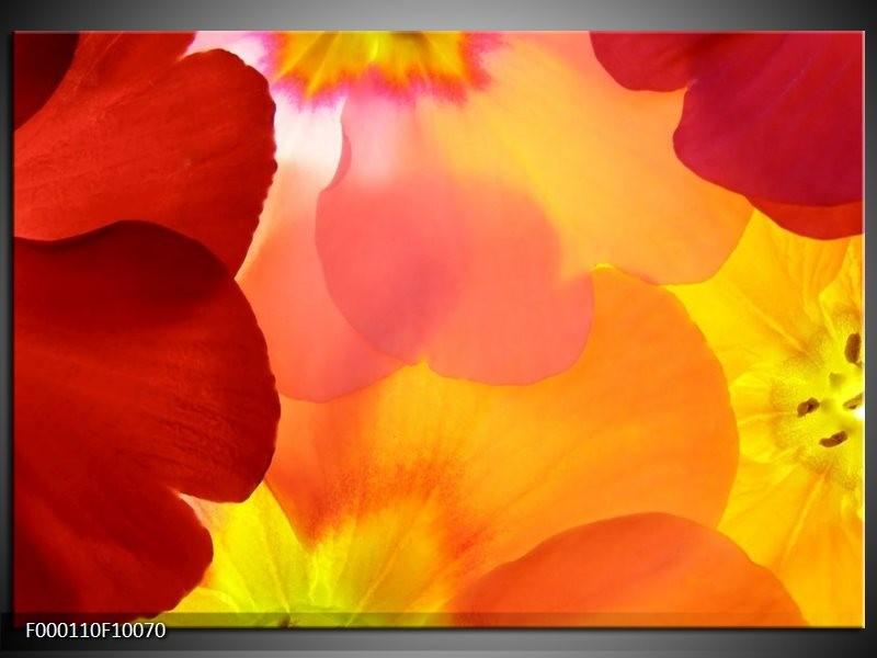 Glas schilderij Blaadjes | Rood, Geel, Oranje