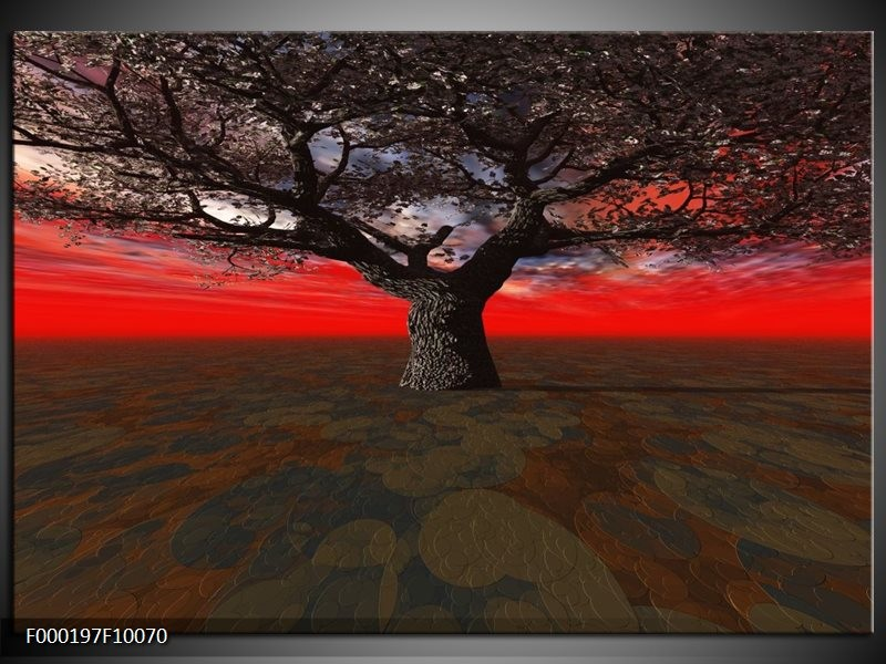 Glas schilderij Boom | Rood, Bruin, Zwart