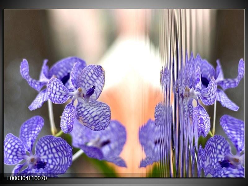 Glas schilderij Natuur | Paars, Grijs