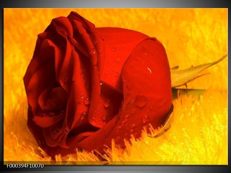 Glas schilderij Roos | Rood, Geel, Goud