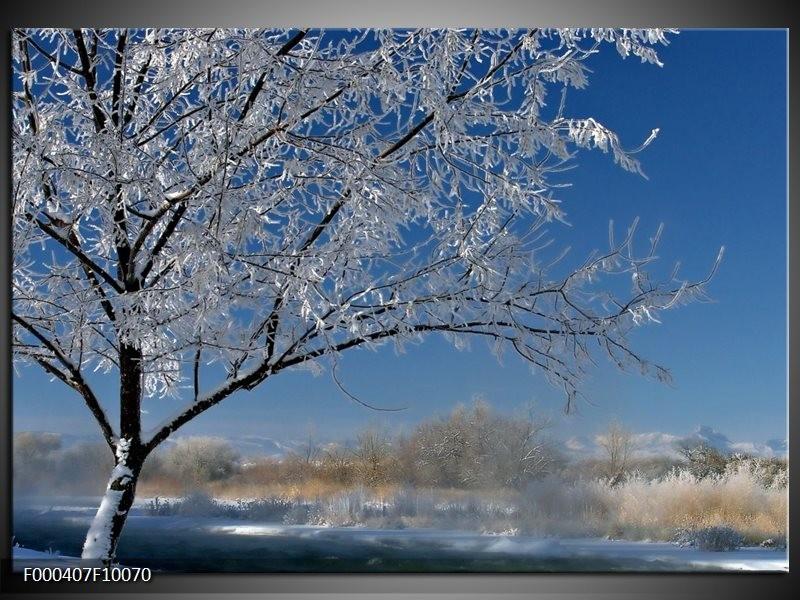 Glas schilderij Boom | Blauw, Wit, Grijs