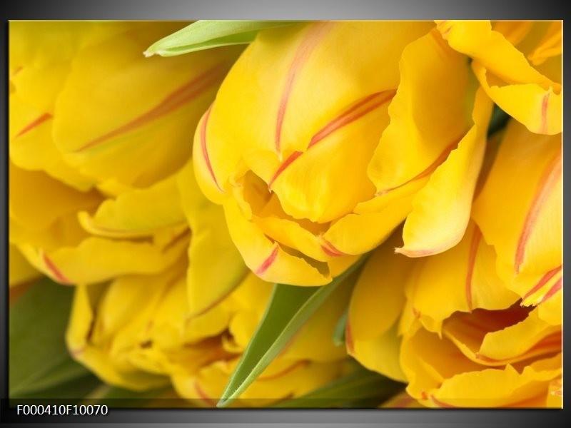 Glas schilderij Tulpen   Geel, Rood, Groen