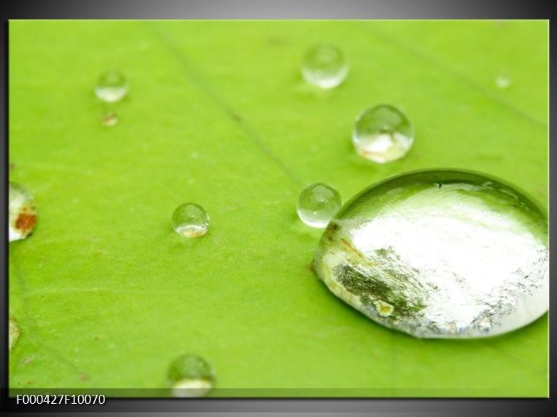 Glas schilderij Druppels | Groen, Wit, Grijs