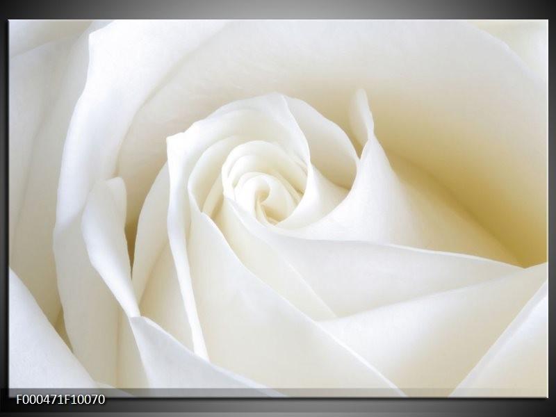 Glas schilderij Roos | Wit