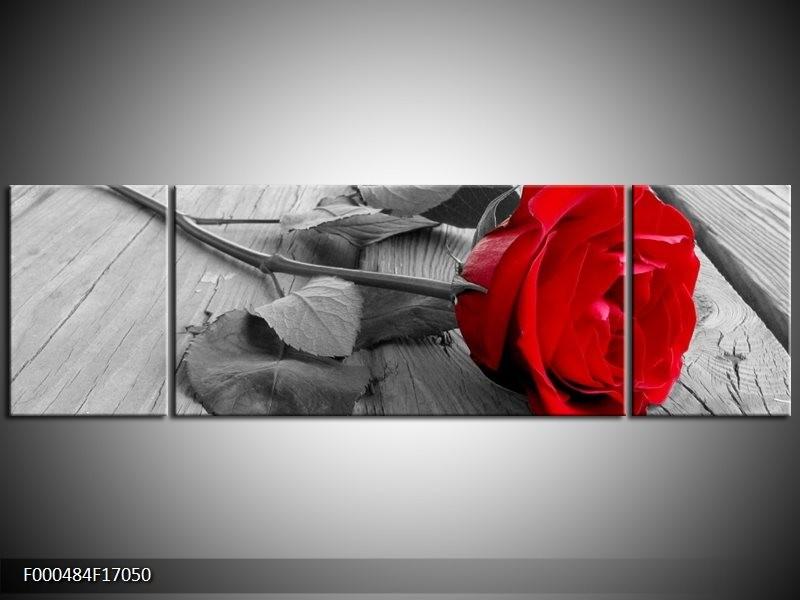 OP VOORRAAD  Foto canvas schilderij Roos | 170x50cm | F000484