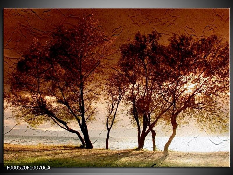 Canvas ART schilderij Bomen   Bruin, Wit, Zwart   100x70cm 5Luik
