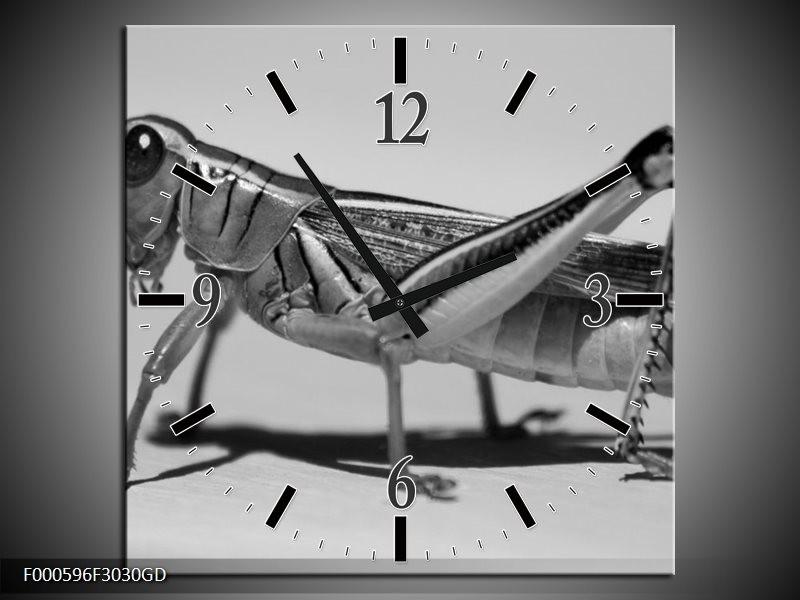 Wandklok op Glas Sprinkhaan | Kleur: Grijs, Zilver, Wit | F000596CGD