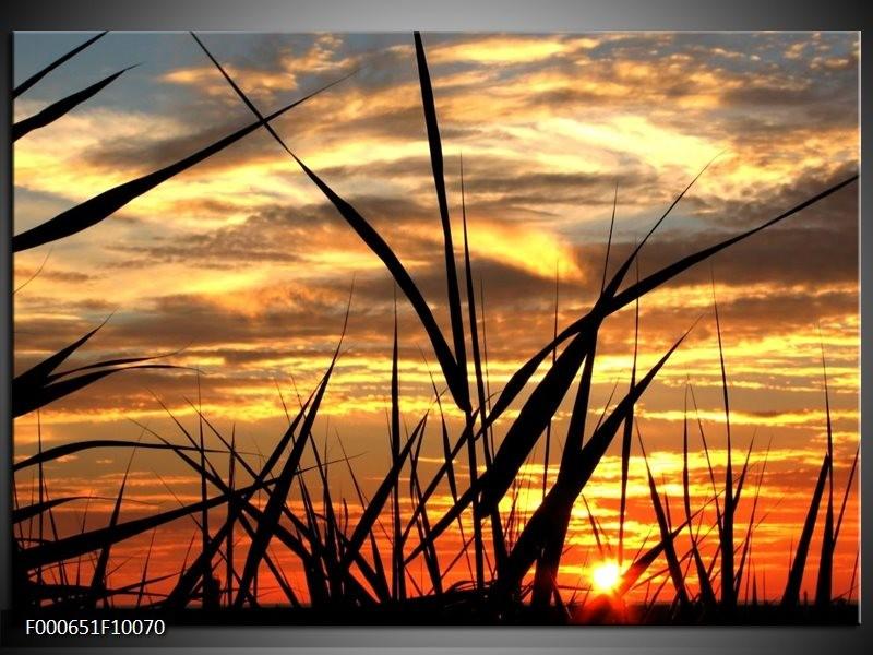 Glas schilderij Zonsondergang | Zwart, Grijs, Geel